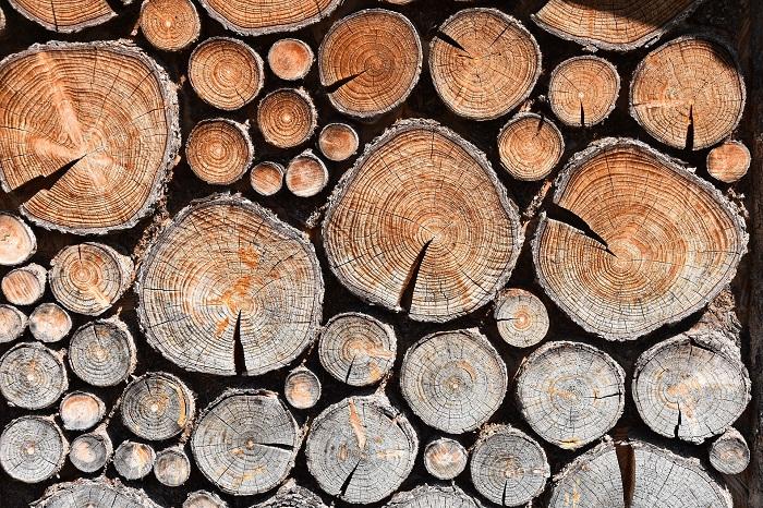 Olej na drevo ktoré máte doma